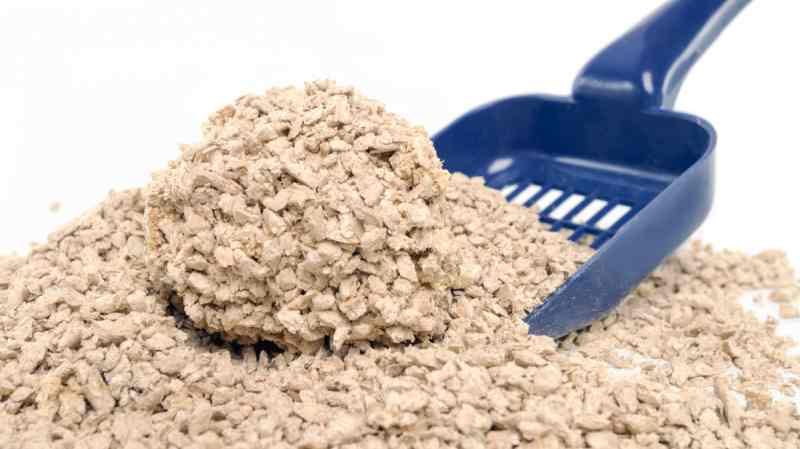 Biodegradable cat litter is eco-friendly